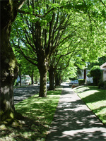 Portland, Oregon, neighborhood